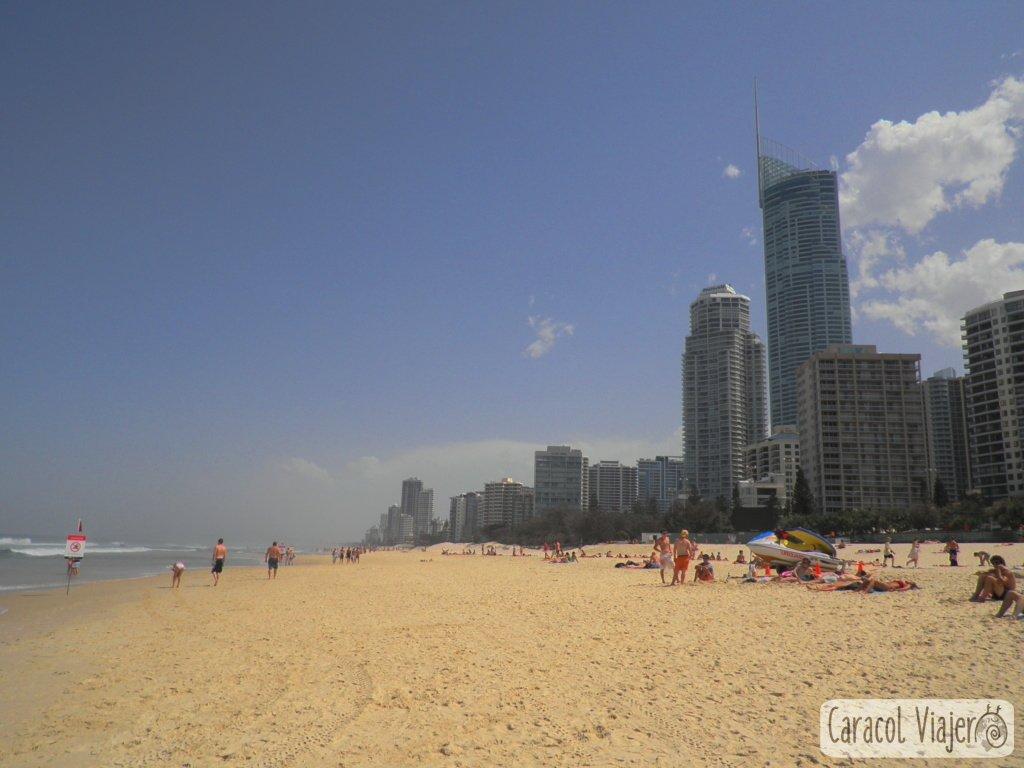 Surfers-Paradise-beach-actividades-Brisbane