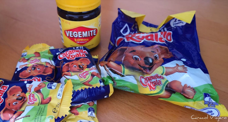 Vegemite y caramel koalas