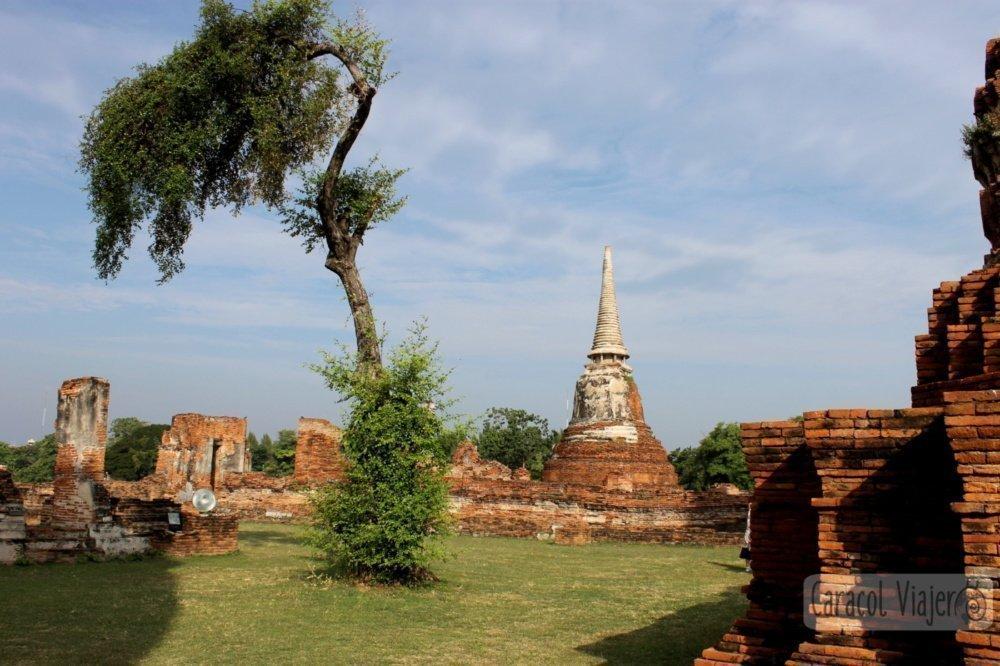 Wat Mahathat Ayutthaya.