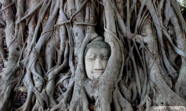 ¿Merece la pena visitar Ayutthaya?