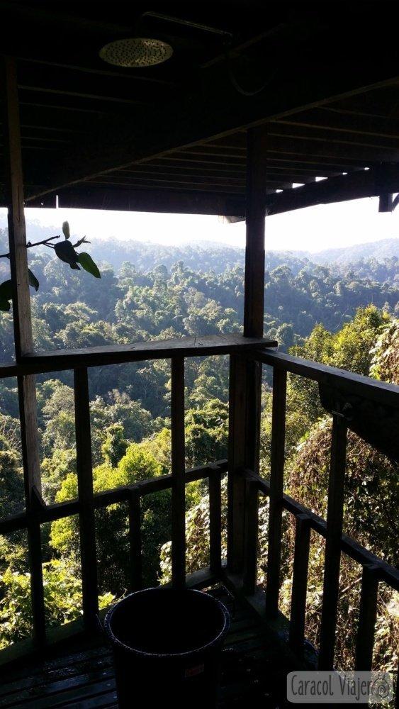 Vistas ducha Gibbon Experience