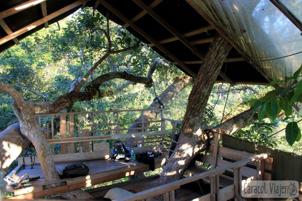 casa-árbol cama The Gibbon Experience