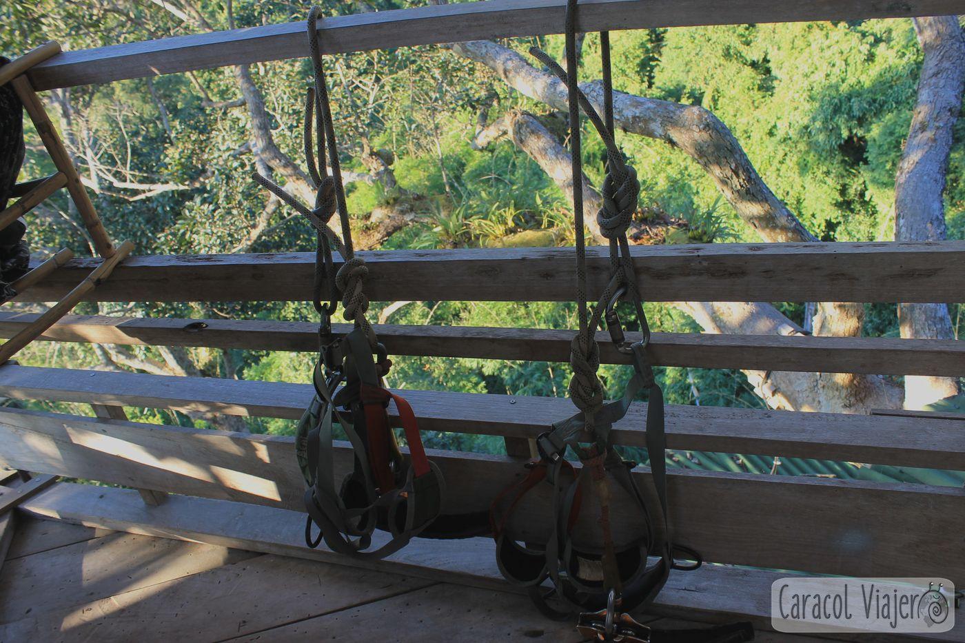 Video tirolinas en Laos The Gibbon Experience