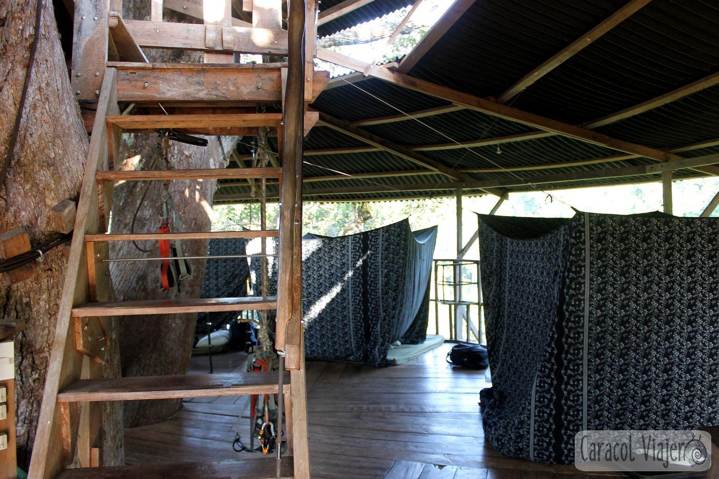 zona común y camas Tibbon Experience