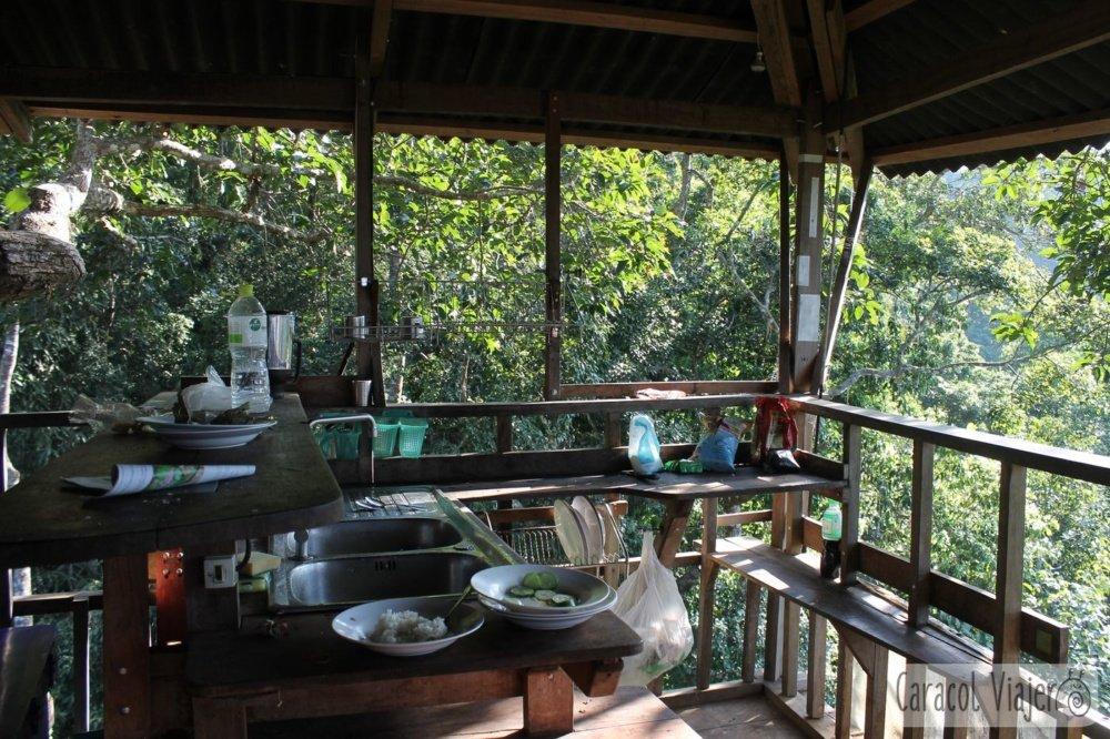cocina gibbon Experience