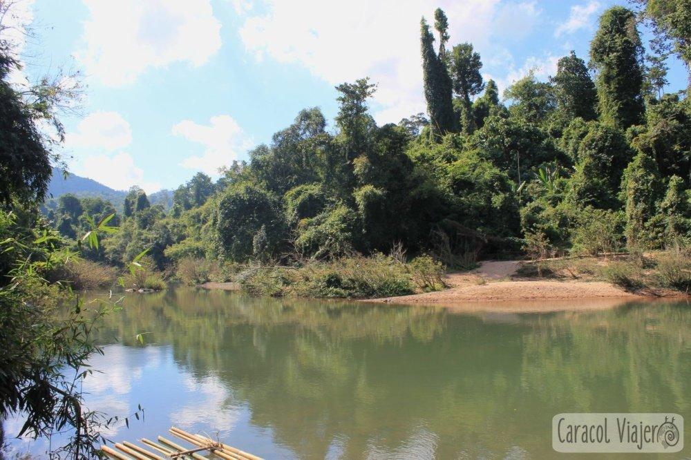 Río en The Gibbon Experience