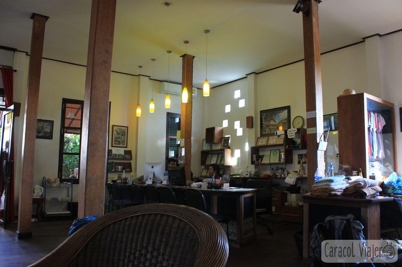 oficina de Gibbon Experience