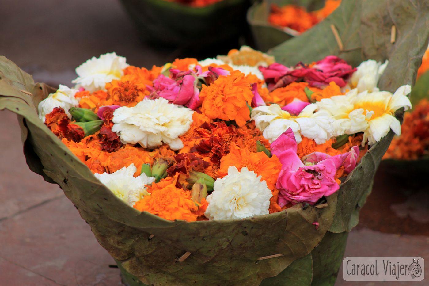 Flores del Aarti en Haridwar