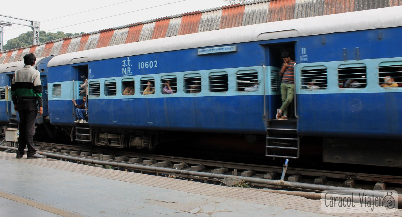 Tren de la India