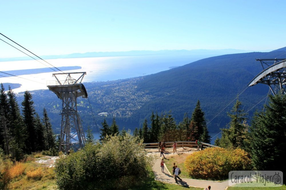 Vancouver Grouse mountain top