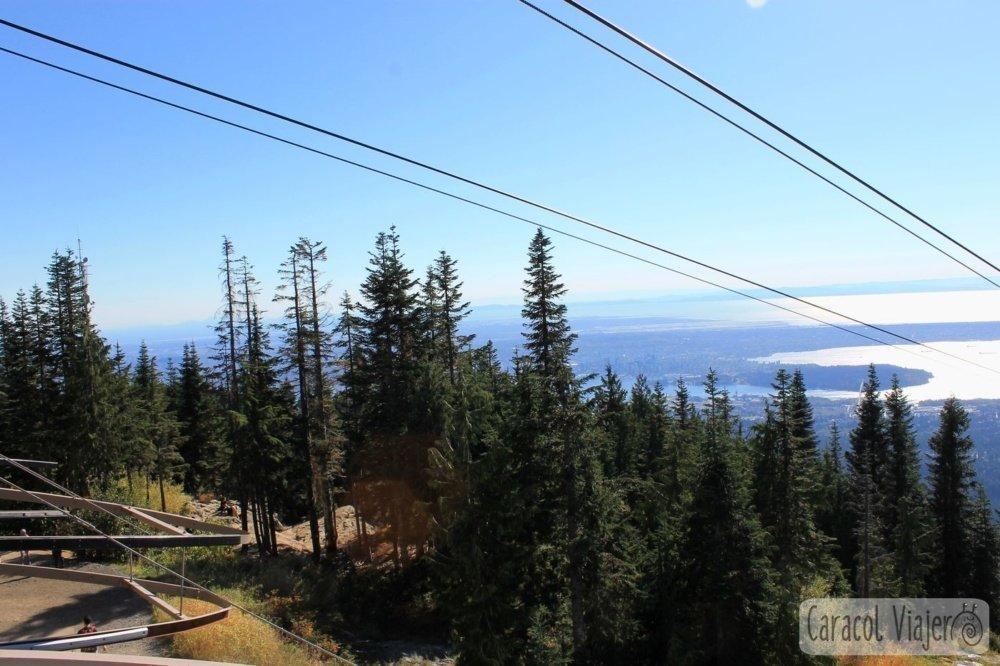 Bosque de Grouse Mountain