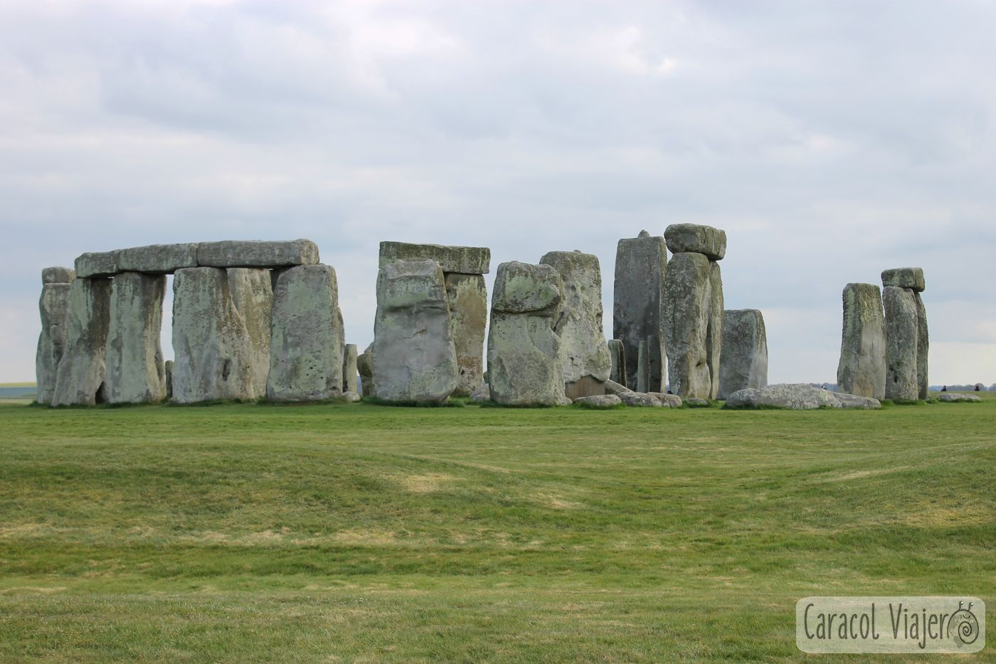 escapada a Stonehenge desde Bristol
