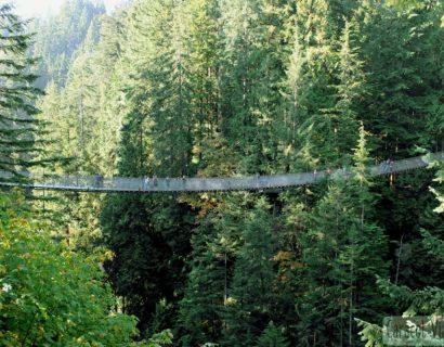 Puente colgante de Vancouver | Grouse Mountain