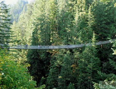 ¡Saca el hígado en Grouse Mountain y el alma en Capilano Bridge!