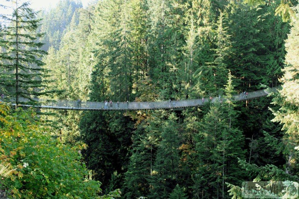 puente colgante de Vancouver