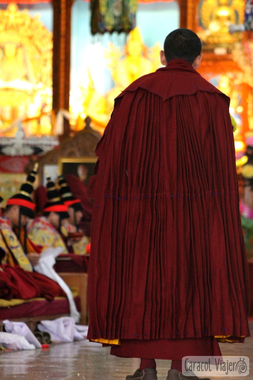 budista en Gyuto