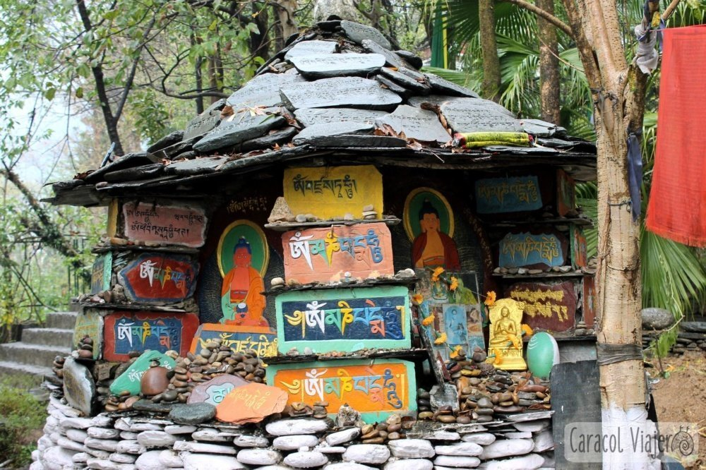 El exilio tibetano en la India: Mcleod Ganj