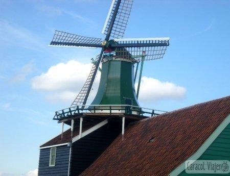 Excursiones desde Ámsterdam y La Haya | Delft y Volendam |