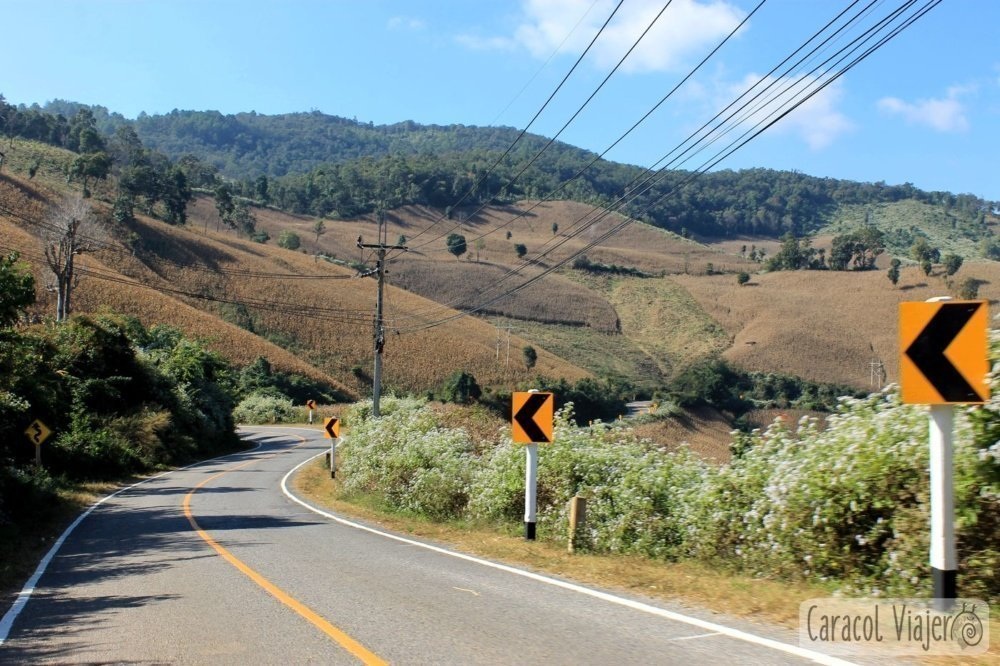 Carretera en Mae Hong Son loop