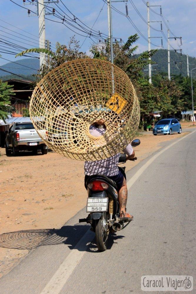 Mimbre en moto Tailandia