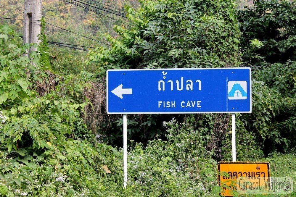 Cueva de peces en Tailandia