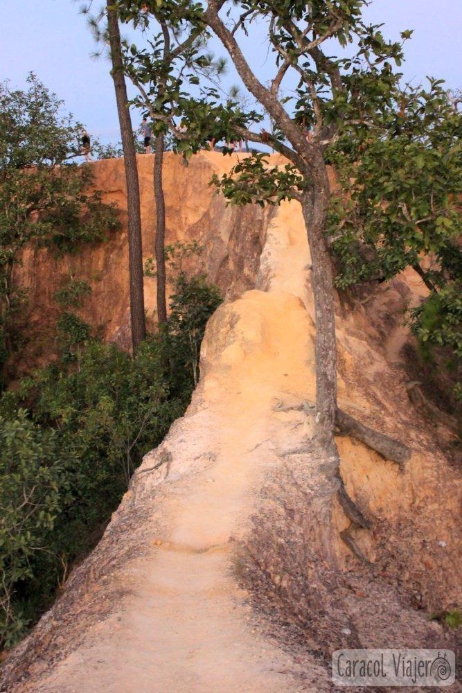 Muro de piedra en Cañón de Pai