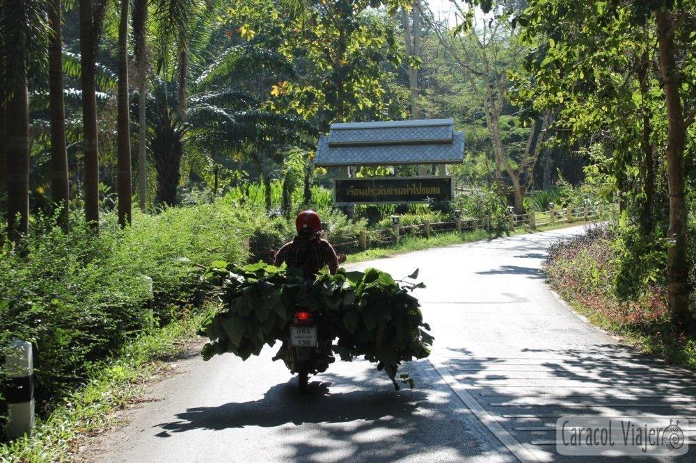 Moto cargada en Tailandia