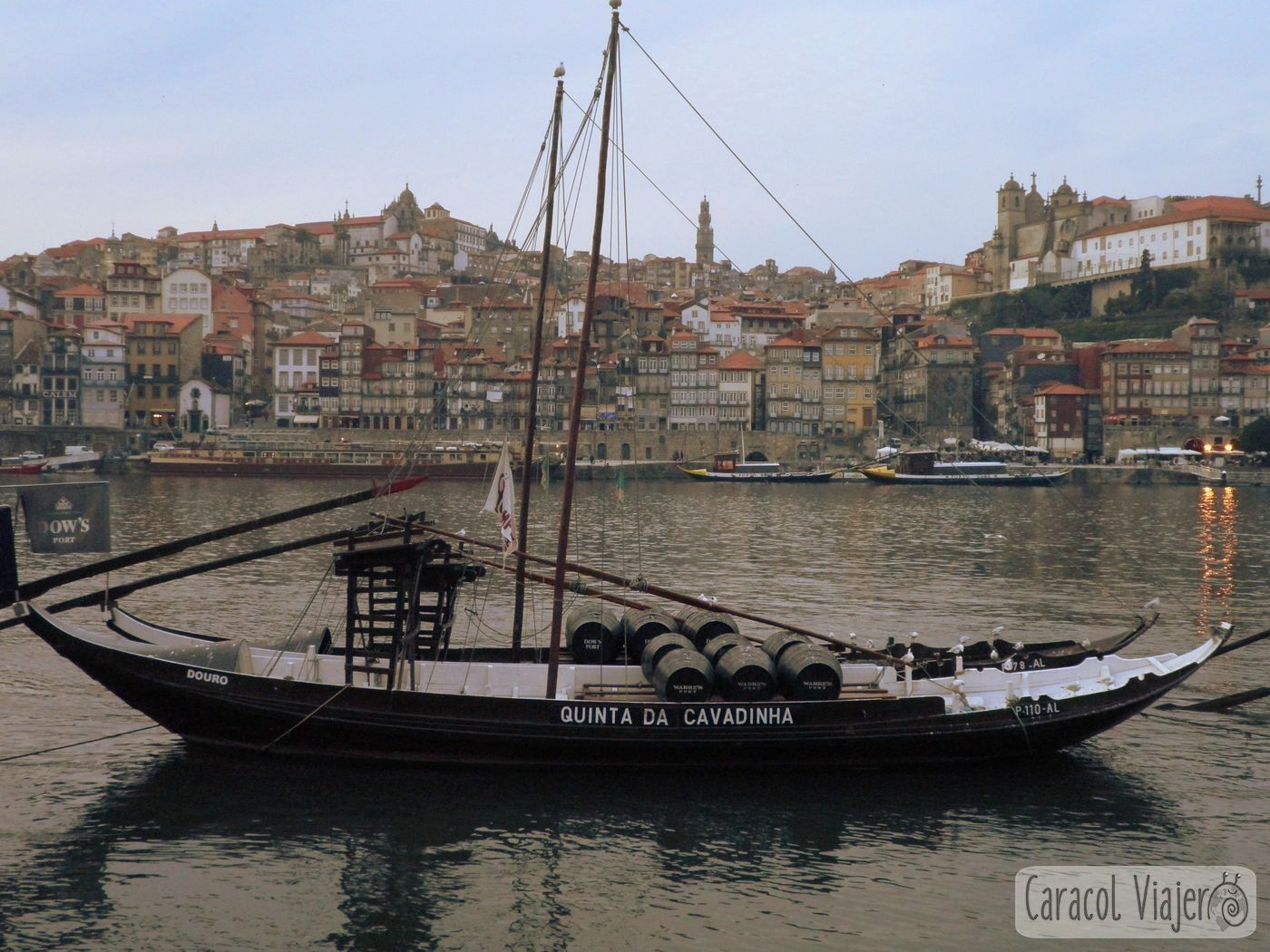 Vino barricas típicos barcos Oporto