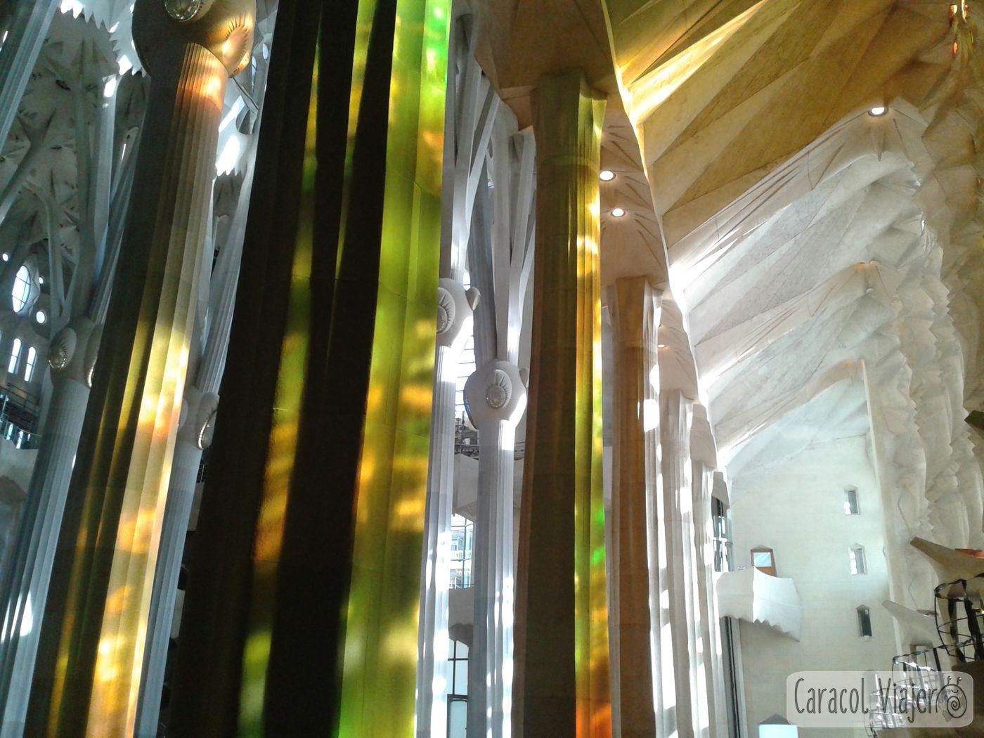 Lugares imprescindibles que ver en España - Sagrada Familia interior columnas