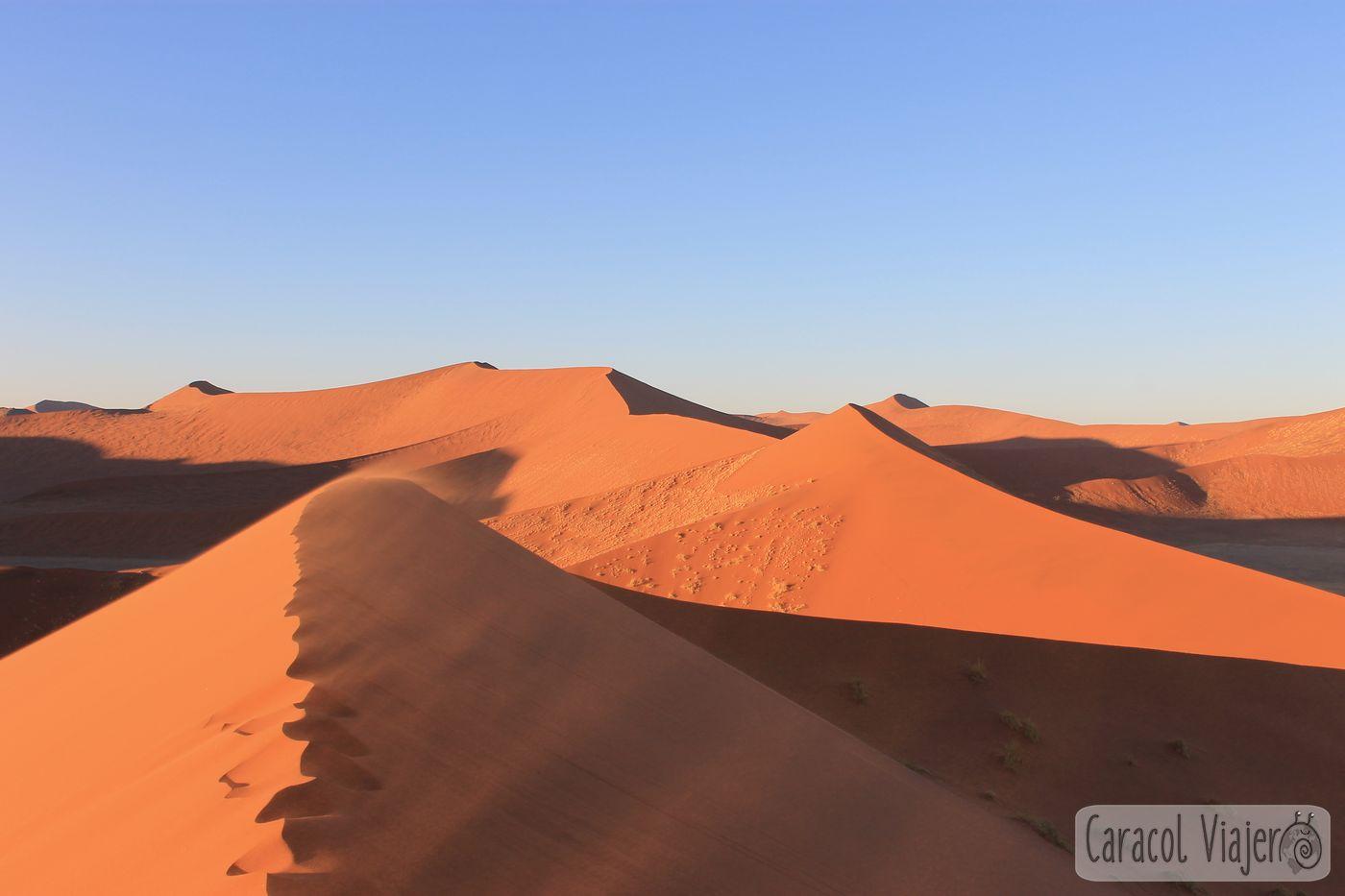 Desierto Namib -Duna 45