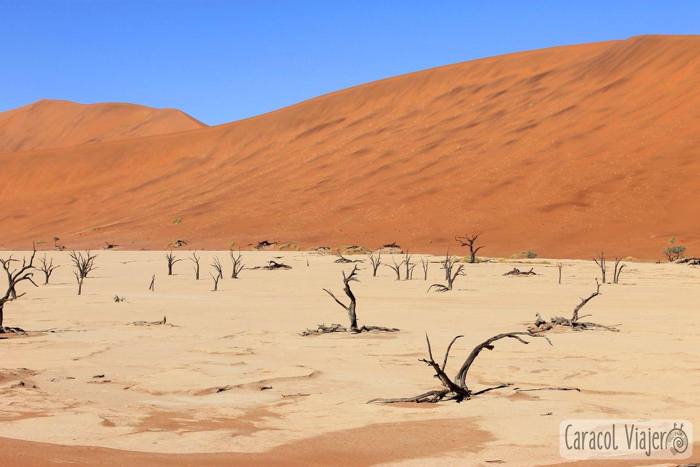 desierto de Namibia y Valle de la Muerte