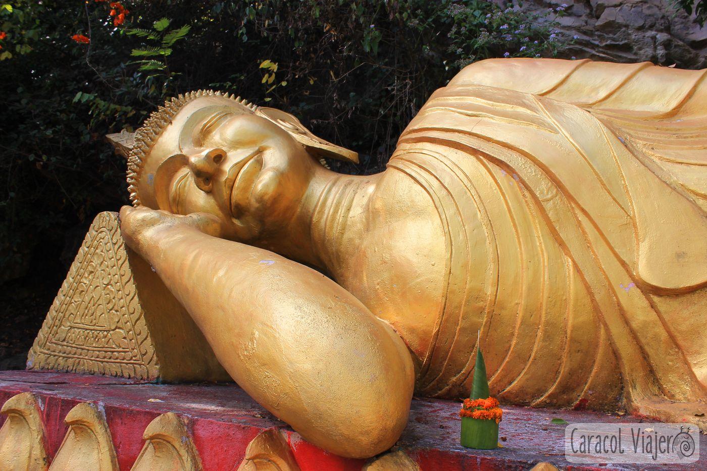 That Chomsi Buda