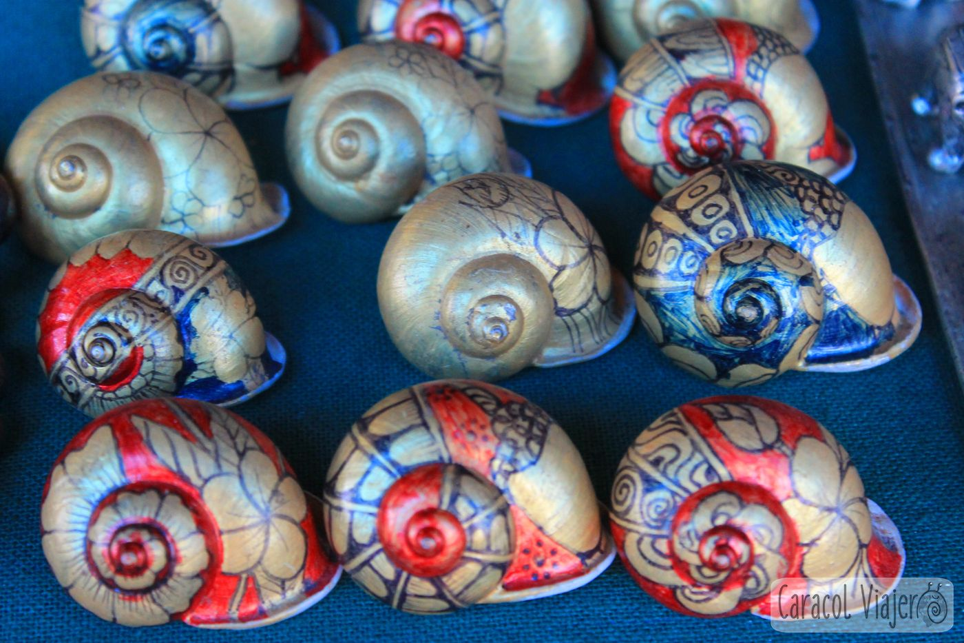 caracoles de colores Laos