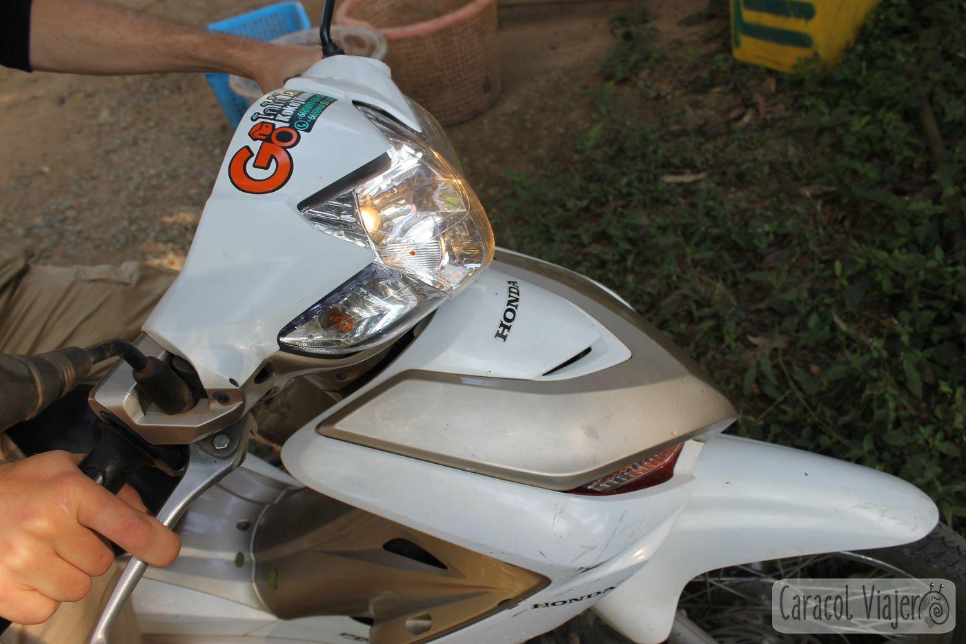 Chiang Dao moto