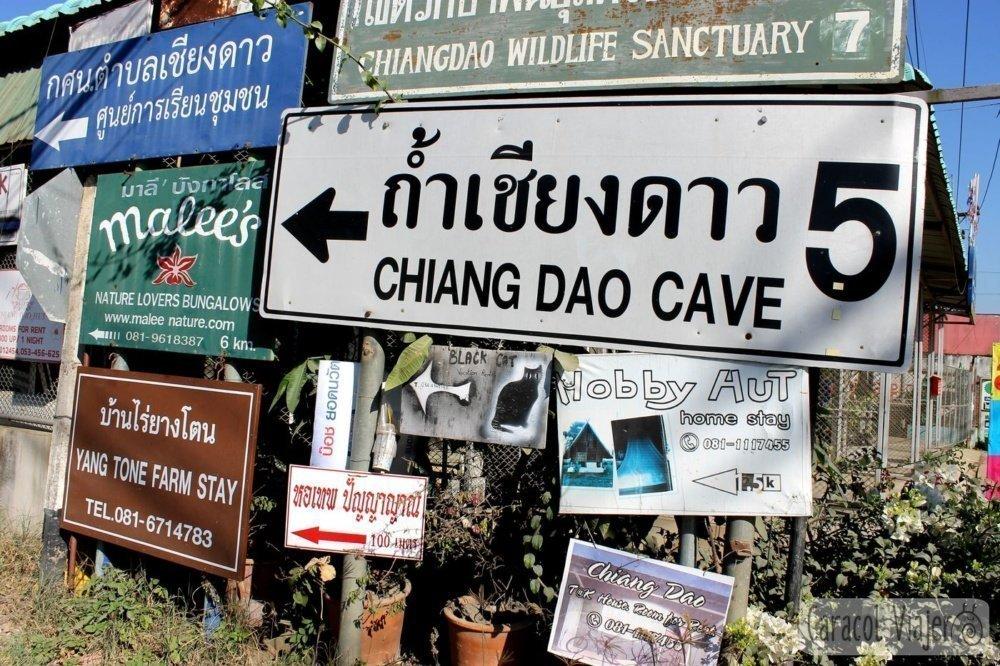 Chiang Dao carteles