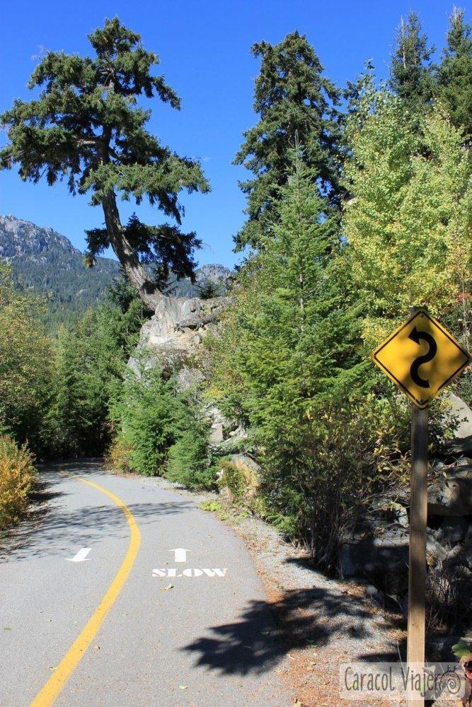 Bici caminos Whistler