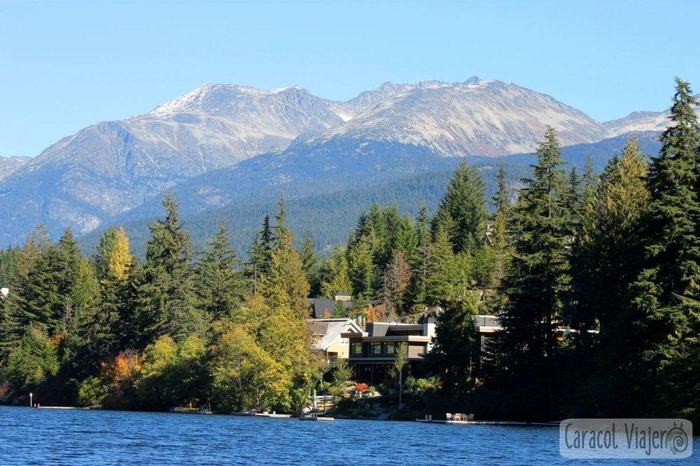Whistler lagos