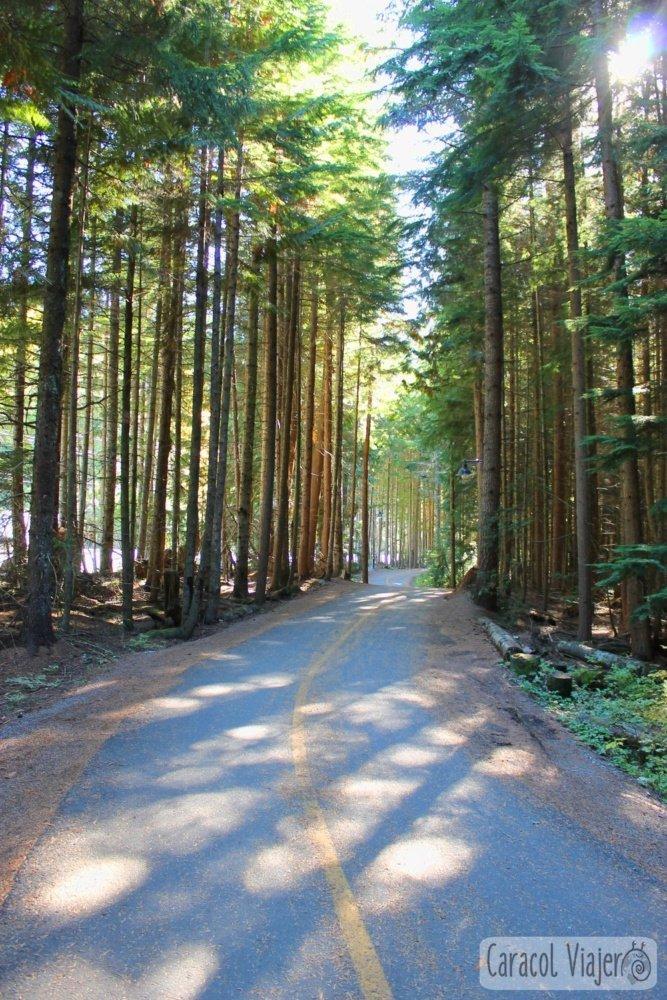 Caminos en bici en Whistler