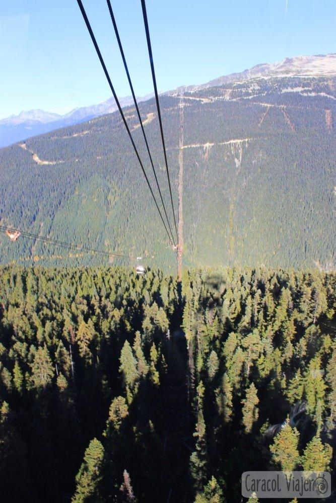 Peak 2 Peak Whistler