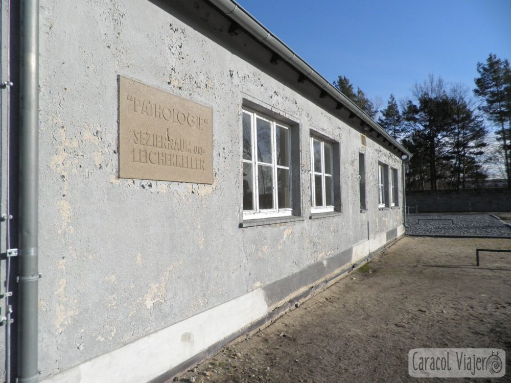 Exterior cocina Sachsenhausen