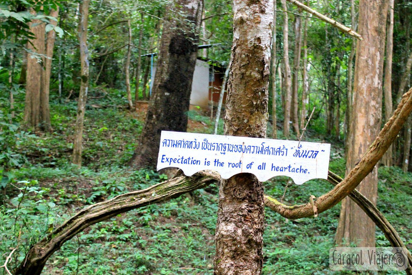 Tailandés cartel