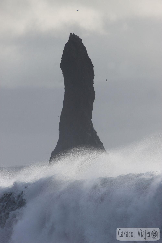 La playa de arena negra en Islandia: Olas en Islandia