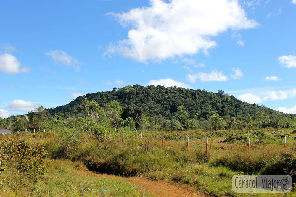 Bolaven Plateau montaña