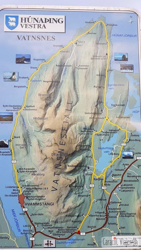 Vatnsnes mapa focas Islandia