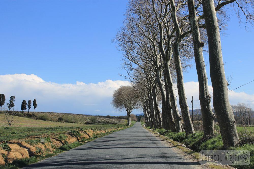Languedoc, sur de Francia