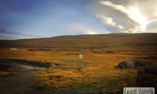 ¿Dónde ver focas en Islandia? La península de Vatnsnes