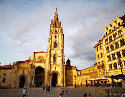 ¿Qué hacer en Oviedo y alrededores?