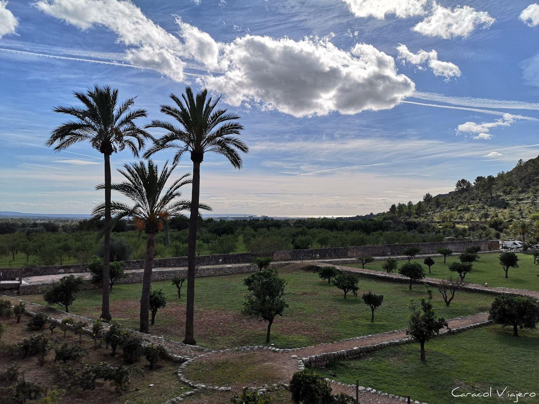 Raixa en Mallorca
