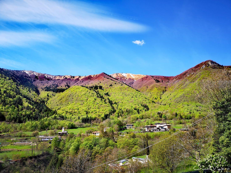 Malga Grassi Riva del Garda