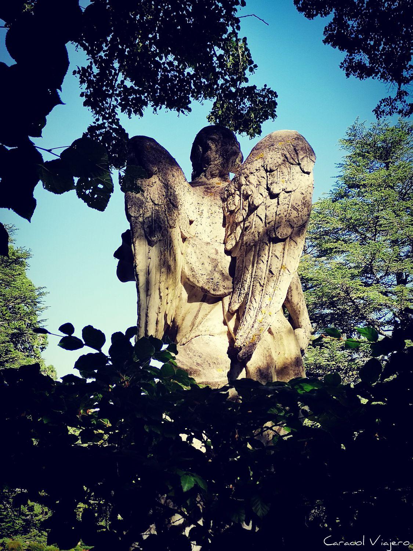 Visitar la Granja de San Ildefonso